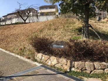 メタセコイア公園の画像2