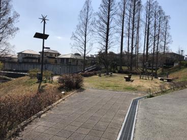 メタセコイア公園の画像4