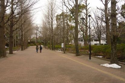 都立城北公園の画像1