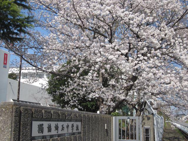 獨協埼玉中学高等学校の画像