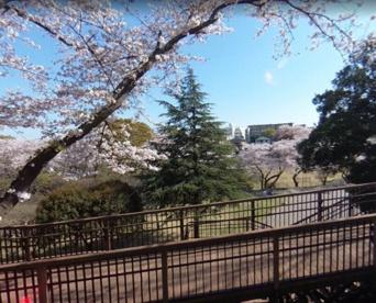 神奈川県立保土ヶ谷公園の画像1