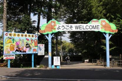 市川市動植物園の画像1