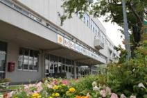 札幌市立新光小学校