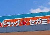 ドラッグセガミ 東雲店