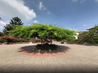練馬区立おひさま公園の画像2