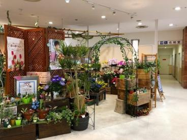 花工房Kayama ミ・ナーラ店の画像3