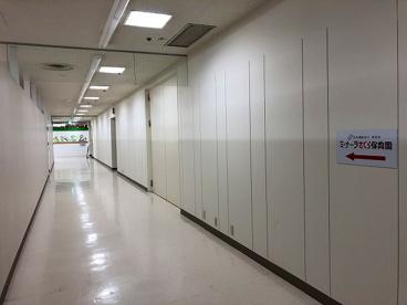 ミ・ナーラさくら保育園の画像4