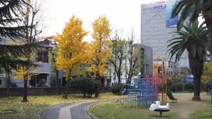 中之町東 広場の画像1