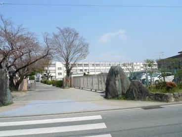 東国分小学校の画像1