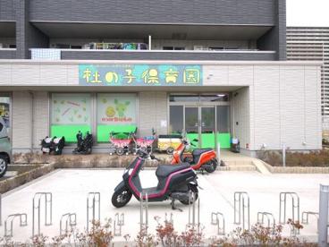 杜の子保育園の画像1
