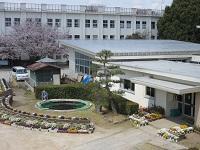 野田市立中央小学校の画像1