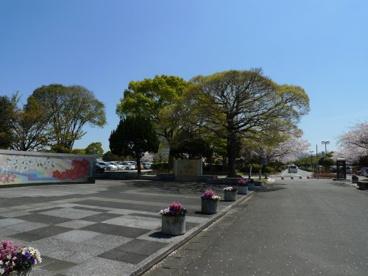 百年公園の画像3