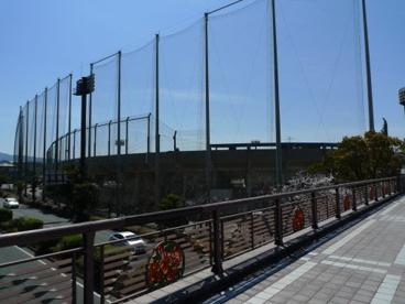 久留米市野球場の画像3