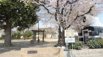 ふじみ野市/大原公園の画像2