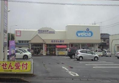 ウエルシア石岡東光台店の画像1