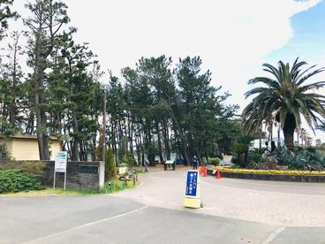辻堂海浜公園の画像1