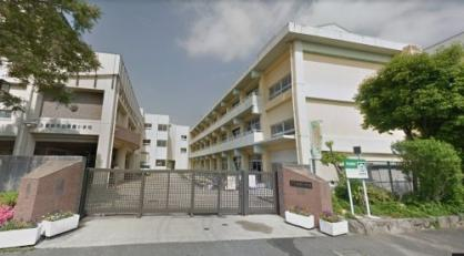 南薫小学校の画像1