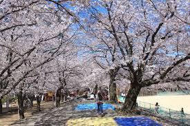 小頭町公園の画像2