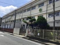 荘島小学校