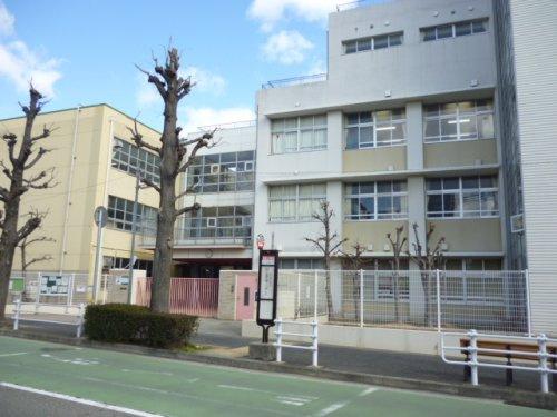 東灘小学校の画像