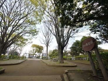 池の端公園の画像1