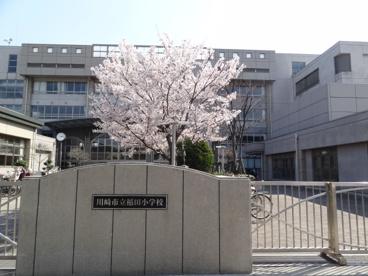 川崎市立稲田小学校の画像1
