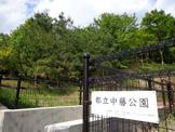 東京都立中藤公園