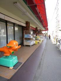 西中島健康堂薬店の画像1