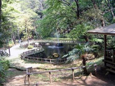 獅子ヶ谷市民の森の画像1