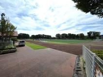 日野市 市民の森スポーツ公園