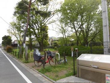 田中山憩いの森の画像1