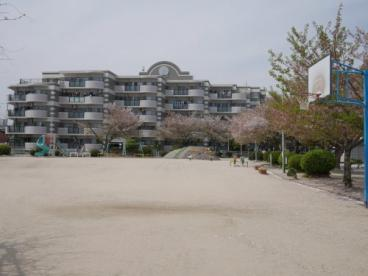 桜町公園の画像1