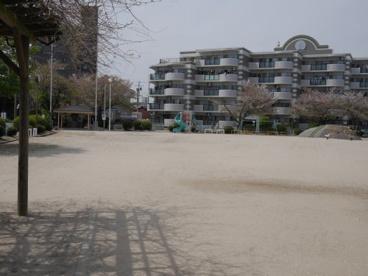 桜町公園の画像2