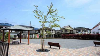 ふじみ野市/苗間みほの公園の画像2