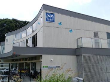 私立Picoナーサリ和田堀公園保育園の画像1