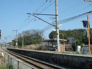 近田の画像1