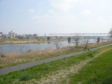 多摩川の画像1