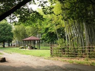 たけのこ公園の画像1