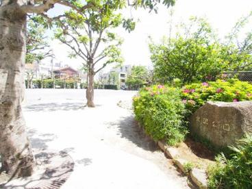 北沢公園の画像1