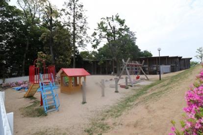 ひじり保育園の画像2