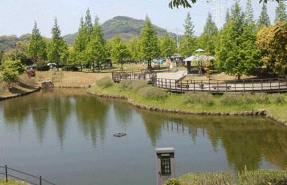 室見川河畔公園の画像1