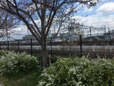 明和池公園の画像1