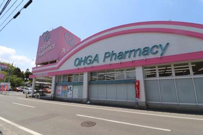 大賀薬局 五条店の画像1
