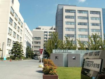 国立大学法人山口大学医学部の画像1