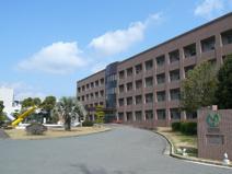 国立山口大学工学部