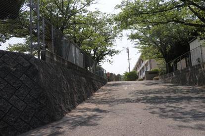 春日市立春日南小学校の画像2