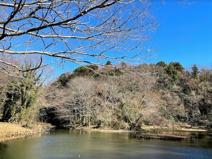 座間谷戸山公園(南入口)
