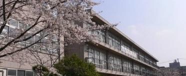 草加市立新田小学校の画像1
