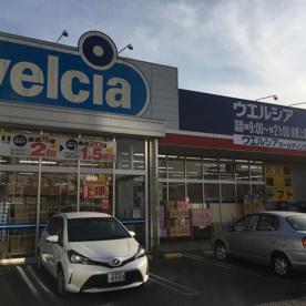 ウエルシア前橋上新田店の画像1