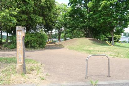 堀之内こぶし緑地の画像1